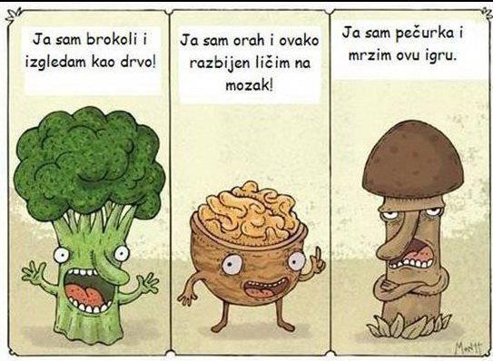 smijesne-slike-gljiva.jpg